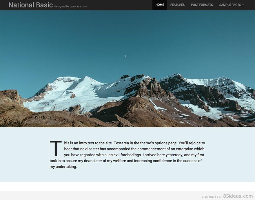 Theme WordPress làm diễn đàn forum miễn phí - National Basic theme