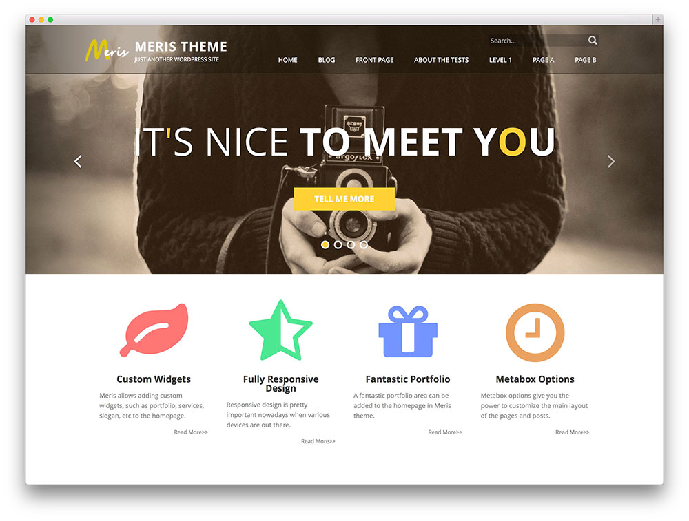 1460044308-6986-meris-agency-theme