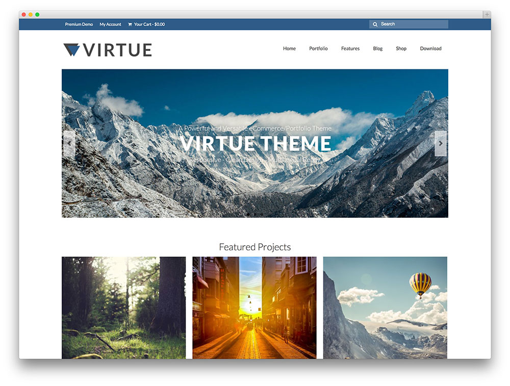 1460044527-9079-virtue-portfolio-theme