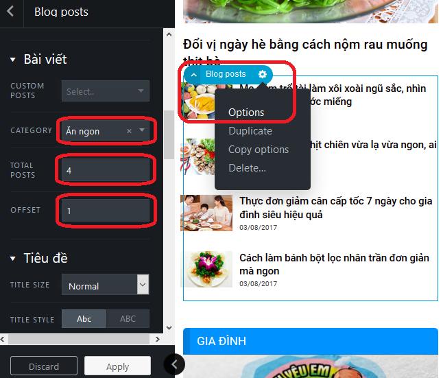 Theme wordpress tin tức / blog đã Việt hóa
